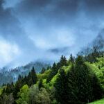 Crisis climática: 5 libros para saber qué nos espera