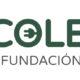 ECOLEC gestiona 54.584 toneladas de RAEE durante el primer semestre de 2018, un 12,5% más que en 2017